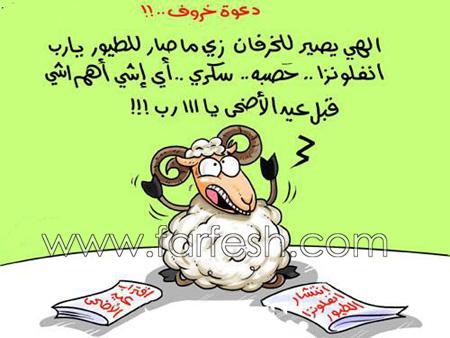 اضحك مع خروف العيد 5rof11