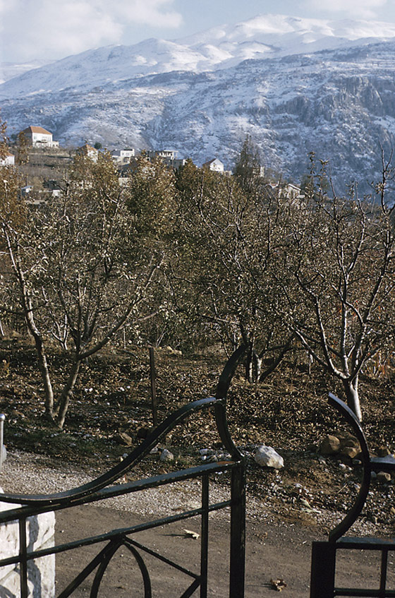 جبال لبنان الجميلة 4279664-800x529.jpg