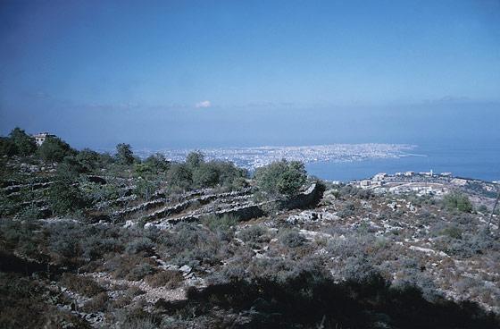 جبال لبنان الجميلة 4279665-526x800.jpg