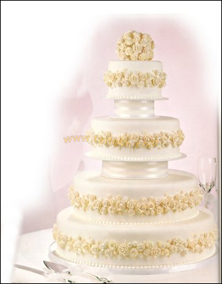 احلى كيكة لاحلى عروسين ka3k1.jpg