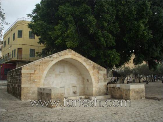 الناصرة بلد رمضانها مسيحي ومطرانها مسلم n23704147476_1839839