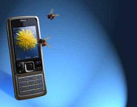 عدد النحل آخذ بالإنخفاض بسبب إشعاعات الهواتف الخلوية!