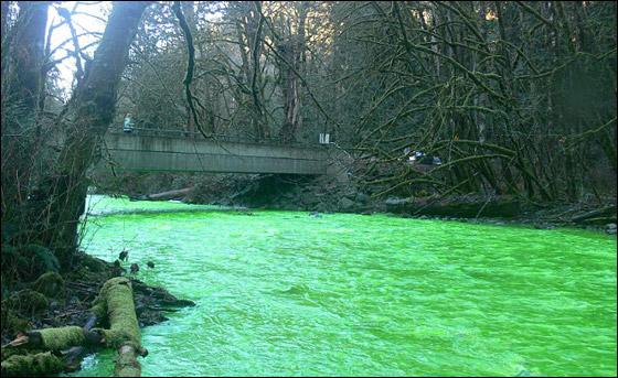 في مشهد مذهل.. مياه نهر اصطبغت باللون الأخضر!!