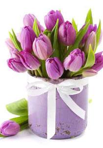 مصريون يرسلون باقات من الورود،لحسنى مبارك! flowers210.jpg