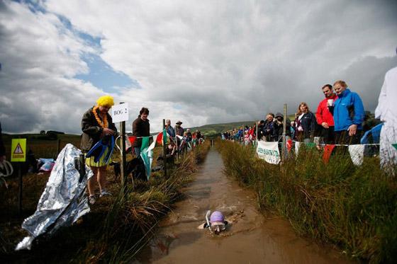 بالصور.. مهرجان الغوص تحت ماء المستنقع القذرة في امريكا!  Bog.jpg2