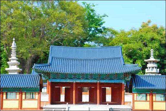 جزيرة جيجو الكورية jejo_05.jpg