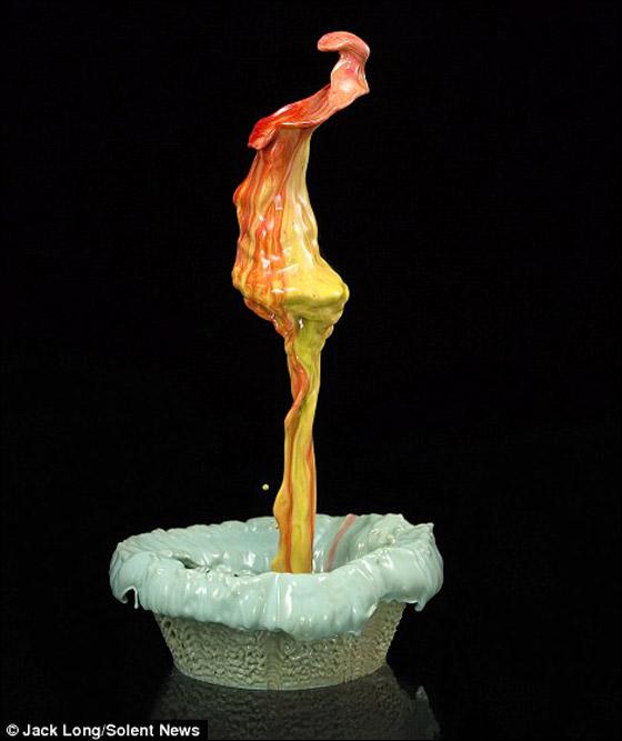 بالصور: قطرات طلاء تتحول الى زهور نابضة بالحياة!