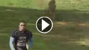 بالفيديو.. سباقات وتحديات مثيرة بين الإنسان والحيوان