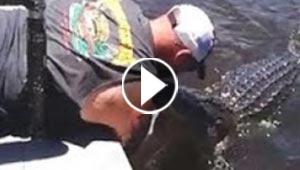 مرشد سياحي يقوم بأخطر مغامرة حين يستدعي تمساحا لتقبيله