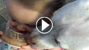 فيديو طريف.. رضيعة تتشارك مع كلبها وجبة زبدة الفول السوداني