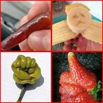 صور طريفة.. أغرب أشكال الفاكهة والخضروات