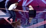 موهبة تدريب الكلاب في برنامج المواهب