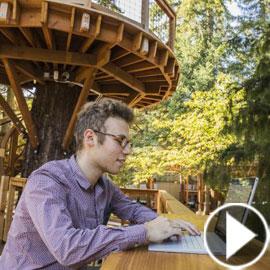 مايكروسوفت تبني مكاتب جديده فوق الأشجار لزيادة الإبداع
